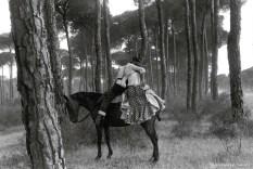 Ref / AILLEURS 12 – Rendez-vous dans la forêt. Andalousie, Espagne
