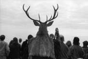 Ref AILLEURS 5 – La forêt translucide. Hastings, Grande-Bretagne