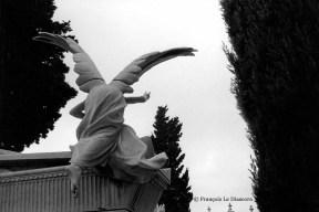 Ref ANGE 7 – Cimetière de Nice