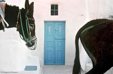 REF GRECE BLEUE 1 – 2 ânes devant une porte bleue, Île de Kalamos