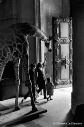 Ref Zoo 2 – Girafe devant des enfants sortant de la grande nef de la galerie