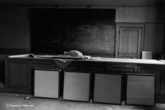 Ref Zoo 20 – Poisson sur un bureau dans l'amphithéâtre de zoologie