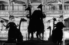 Ref Zoo 3 – La grande nef de la galerie avec buffles et girafes en silhouette