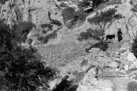 Ref Grèce 20 – Pope tirant un âne, Olympos, île de Karpathos