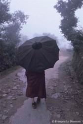 Ref BOUDDHA 12 – Moine tibétain dans la brume, McLeod Ganj, Inde