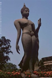 Ref BOUDDHA 21 – Bouddha en marche, Sukhothai, Thailande