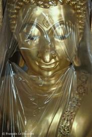 Ref BOUDDHA 22 – Visage de Bouddha voilé, Temple de Wat Po, Bangkok, Thaïlande
