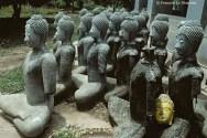 Ref BOUDDHA 7 – Bouddhas, Ayuthaya, Thaïlande