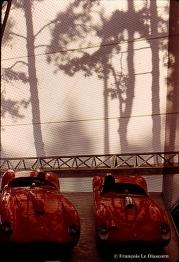Hommage à Ferrari - Fondation Cartier pour l'Art Contemporain © François Le Diascorn (8)